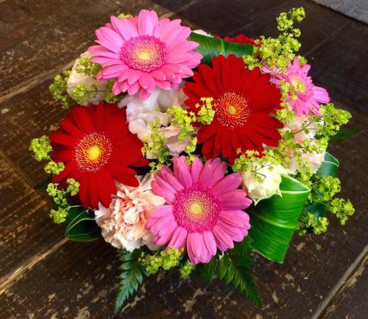 ミヤコ花壇 プレゼント